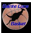 Ancien logo SLB